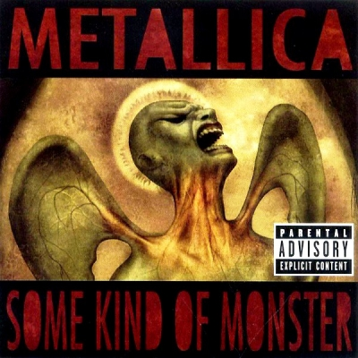 Metallica ‎– Some Kind Of Monster