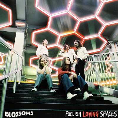 Blossoms ‎– Foolish Loving Spaces