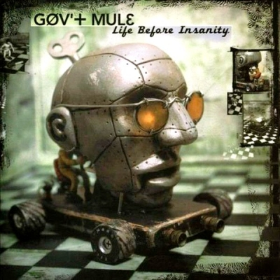 Gov't Mule ‎– Life Before Insanity (2xLP)
