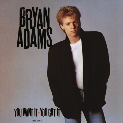 Bryan Adams ‎– You Want It - You Got It
