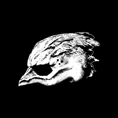 Legend Of The Seagullmen ‎– Legend Of The Seagullmen