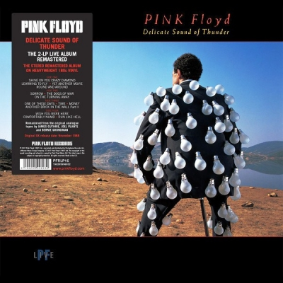 Pink Floyd ‎– Delicate Sound Of Thunder (2xLP)