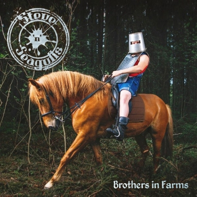 Steve'n'Seagulls ‎– Brothers In Farms (2xLP)