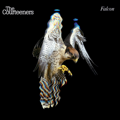 The Courteeners ‎– Falcon