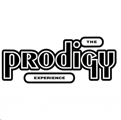 The Prodigy ‎– Experience (2xLP)